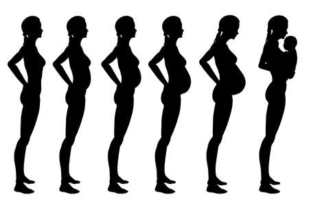 Stages of pregnancy of the woman. A profile full growth it is isolated on a white background photo