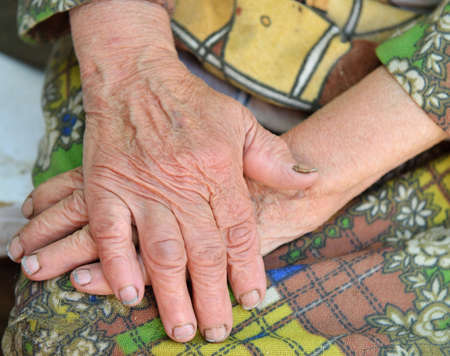 Hands of the old woman - 85 years age. 70 years works in collective farm. Stock Photo - 13760179