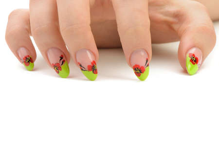 Female hand with manicure closeup. Isolated on white.Drawing red poppy flowers. Stock Photo - 13979081