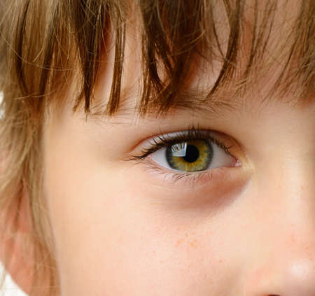 Children eye closeup. High detailed photo