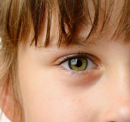 ojos marrones: Los ni�os de cerca los ojos. Foto detallada de alta Foto de archivo