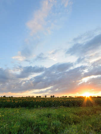 The landscape of the field with a spectacular sky. High Dynamic Range photo Stock Photo - 14408396