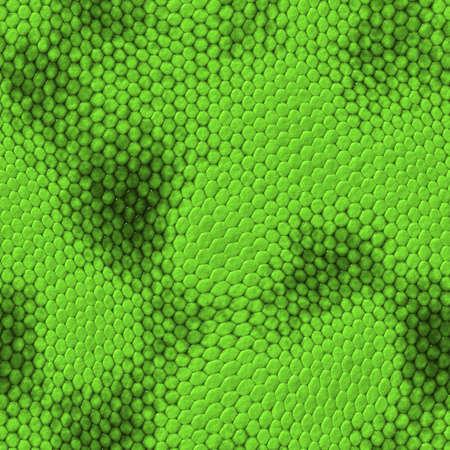 snakeskin: seamless snake texture. High detailed sufrace animals