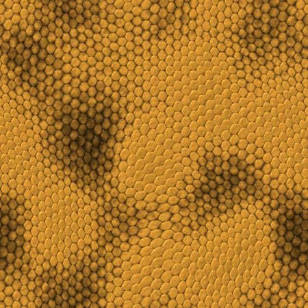 snake skin pattern: seamless snake texture. High detailed sufrace animals