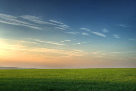 Field and picturesque sky. Highly detailed color photo