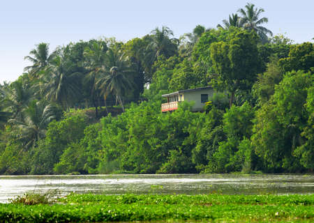 Tropical river . The river flowing in the country of Sri Lanka Stock Photo - 16596805