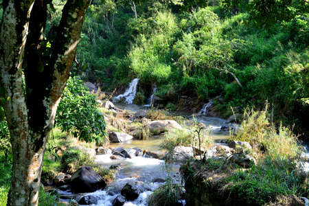 beautiful mountain river. The river flowing in the country of Sri Lanka Stock Photo - 16596777