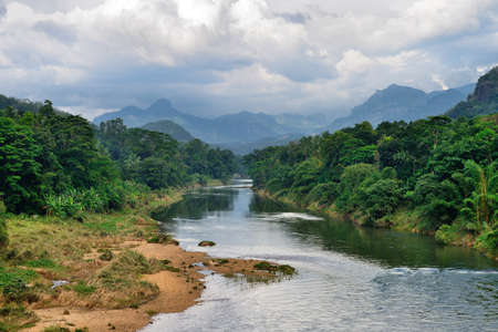 Tropical river. The river flowing in the country of Sri Lanka Stock Photo - 16596799