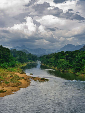 Tropical river. The river flowing in the country of Sri Lanka Stock Photo - 16596806