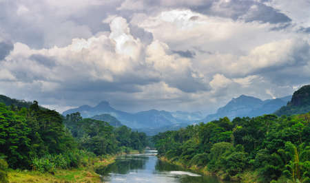 Tropical river. The river flowing in the country of Sri Lanka Stock Photo - 17017749