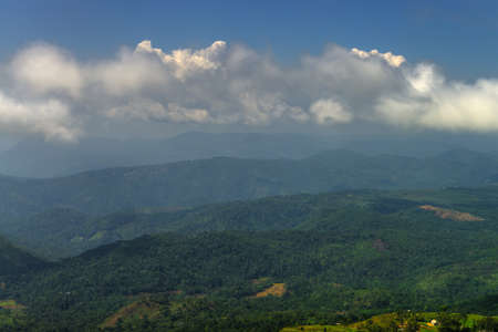 La jungle. Montagnes couvertes de for�t sauvage. Pays du Sri Lanka photo