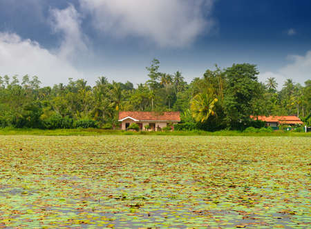 The house on the lake . Country Of Sri Lanka Stock Photo - 17465941