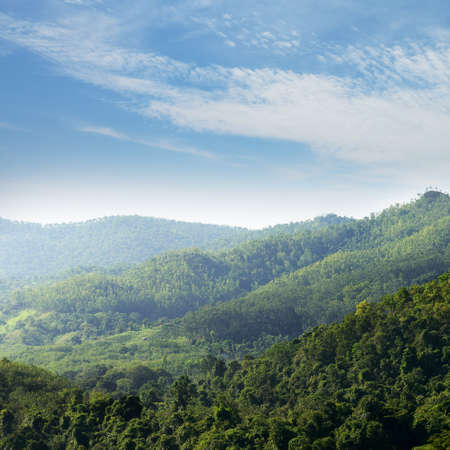 The jungle. Mountains covered with wild forest. Country Of Sri Lanka Stock Photo - 17463914
