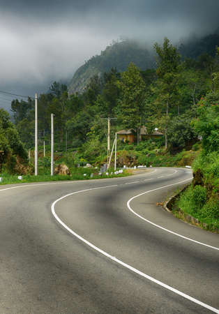 road to the mountains. Tropical forest on the roadside. The Island Of Sri Lanka.Fog above forest