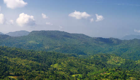 The jungle. Mountains covered with wild forest. Country Of Sri Lanka Stock Photo - 17581509