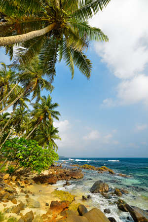 Coast ocean. Beautiful shores of the Indian ocean Stock Photo