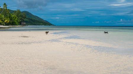 Water Hut of Homestay on Kri Island. Raja Ampat, Indonesia, West Papua.