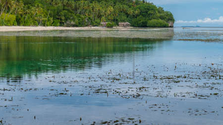 pristine corals: Water Hut of an Homestay on Monsuar Island. Low Tide. Raja Ampat, Indonesia, West Papua. Stock Photo