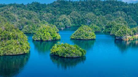 Many Rocks covered by Palmtrees in Passage between Gam and Waigeo, View Point near Warikaf Homestay. West Papuan, Raja Ampat, Indonesia. Stock Photo