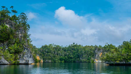 Rocks overgrown with Palmtrees in Hidden Bay on Gam Island near Kabui Bay and Passage. West Papuan, Raja Ampat, Indonesia Stock Photo