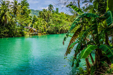 Jungle green river Loboc at Bohol island of Philippines. Bamboo hut under palm trees, Bohol, Philippines Stock fotó