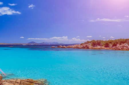 seaweeds: Clear amazing azure coloured sea water in Capriccioli beach, Sardinia, Italy