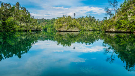 Rocks overgrown with Palmtrees in Hidden Bay on Gam Island near Kabui and Passage. West Papuan, Raja Ampat, Indonesia Stock Photo