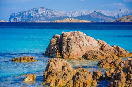 seaweeds: Clear amazing azure coloured sea water on Capriccioli beach with granite rocks, Sardinia, Italy