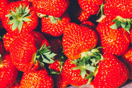 Close up of strawberry in a box - full filled frame. Stock Photo