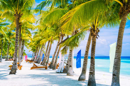 Tropical beach at Panglao Bohol island with chairs on the white sand beach with blue sky and palm trees. Travel Vacation Stock Photo