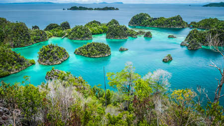 Pianemo islands surrounded by azure clear water and covered by green vegetation. Raja Ampat, West Papua, Indonesia