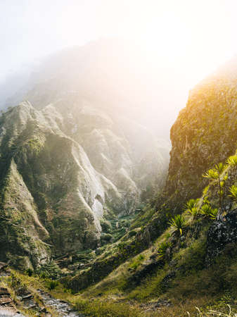 Epic view of the ravine canyon covered with green lotus and banana and other tropical plants. Warm sunrays light comming throught. Santa Antao Island. Cape Verde