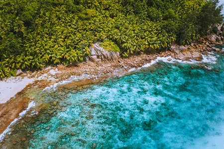 Aerial drone shot of palm grove and transparent blue water on Seychelles tropical beach, La Digue island