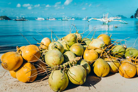 Branch of coconut fruits on the corong corong beach in El Nido, Palawan, Philippines Stock Photo