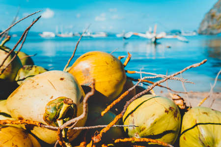 Close up of coconut fruits on the corong corong beach in El Nido, Palawan, Philippines