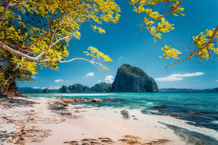 Beautiful landscape scenery of El Nido coastline. Unique amazing Pinagbuyutan island in background framed by tree branches. Palawan, Philippines Stock Photo - 123541359