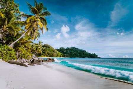 Beautiful Anse intendance, tropical beach. Ocean wave roll on sandy beach with coconut palm trees. Mahe, Seychelles. Stock Photo - 123541558