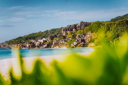Grand Anse tropical beach in La Digue, Seychelles with its famous granite rock formations. Defocused blur natural green.