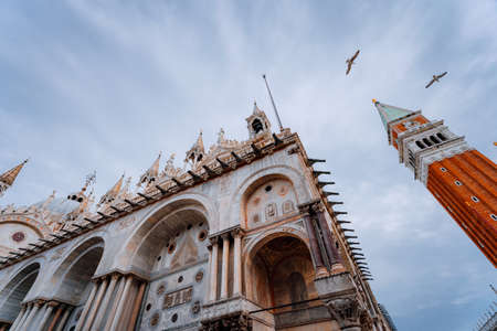 Detail of the bell tower Campanile di San Marco and the cathedral Cattedrale of St. Mark in Venice and flying seagulls. Venice, Italy