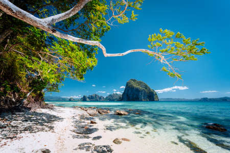 Beautiful exotic southern nature impressive epic tropical islands, Philippines, Palawan Stok Fotoğraf