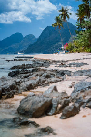 Boats in low tide under palm trees with amazing nature scenery rocky defocused foreground. Tropical travel landscape in Philippines