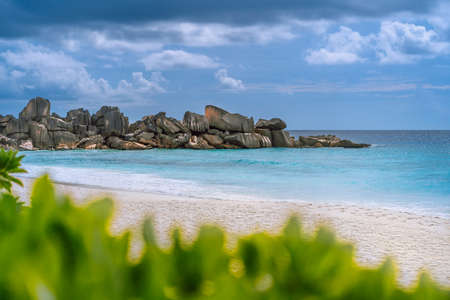 Grand Anse beach at La Digue island in Seychelles. White sandy beach with blue ocean lagoon. Green defocused foliage leaves in foreground Stock Photo