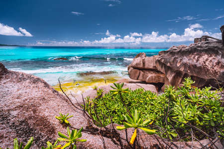 Amazing granite boulders in the jungle of Anse Source dArgent on La Digue Island, Seychelles