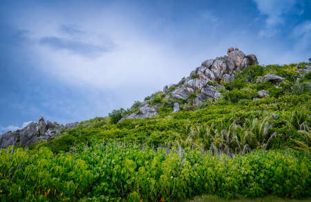 La Digue Island, Seychelles. Beautiful tropical landscape of green hills on the shores of the Indian Ocean.
