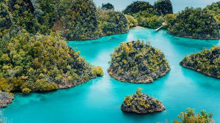 Pianemo Islands, Blue Lagoon with Green karst limestone Rocks, Raja Ampat, West Papua. Indonesia Foto de archivo