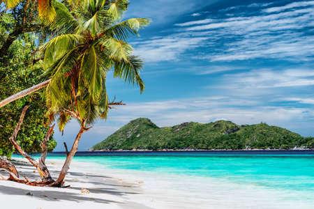 Scena luksusowe wakacje na tropikalnej wyspie. Rajska plaża z białym piaskiem i palmami. Koncepcja wyjazdów turystycznych na duże odległości