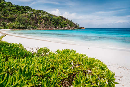 Beautiful Petite Anse beach at Mahe Island, Seychelles. Blue ocean lagoon and white sand tropical beach on holiday vacation Stock Photo