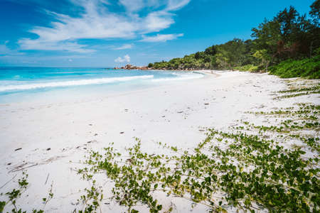 White sandy beach and turquoise ocean at Anse Cocos Peaceful wallpaper of tropical Seychelles beach, La Digue Banque d'images