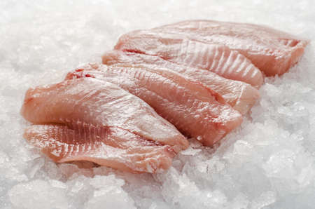 fish fillet: fresh fish fillet