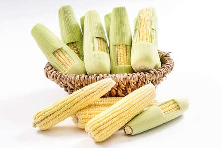 corncob: green corncob